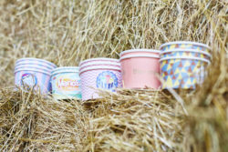 Biodegradable Ice Cream Cups