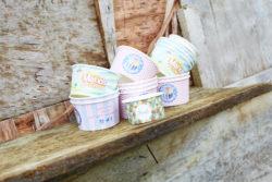 Designer Ice Cream Cups